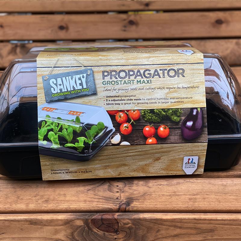 Maxi propagator